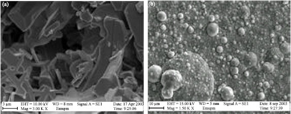 Image for - Annealing Treatment of Bi (Pb)-Sr-Ca-Cu-O Thin Films on MgO by Pulsed Laser Deposition