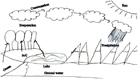 Image for - Science Students' Misconceptions of the Water Cycle According to their Drawings