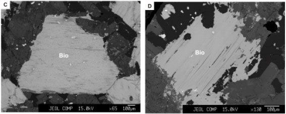 Image for - Petrography and Mineral Chemistry of the Boroujerd Pluton (Sanandaj-Sirjan Zone, Western Iran)