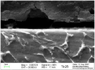 Image for - The Effect of Dry Machining on Surface Integrity of Titanium Alloy          Ti-6Al-4V ELI