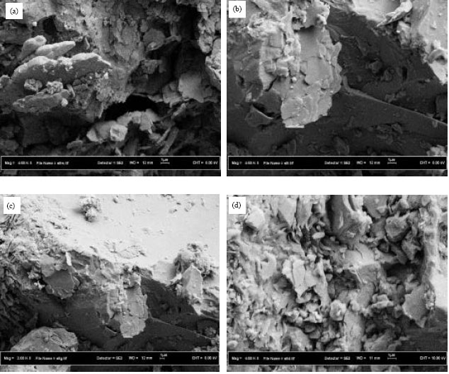 Image for - Scale Formation Due to Water Injection in Berea Sandstone Cores