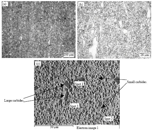 Image for - Direct Partial Remelting of XW-42 Steel in Semi-Solid Zone