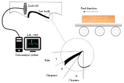 Image for - Optimizing the Cutting of Tension Wood in Rubberwood: An Economic and Quality Perspective