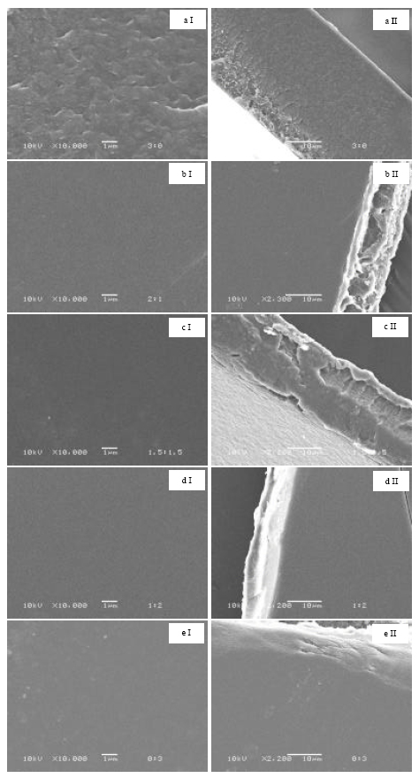 Image for - Characterization of Tetracycline-loaded Thai Silk Fibroin/Gelatin Blend Films