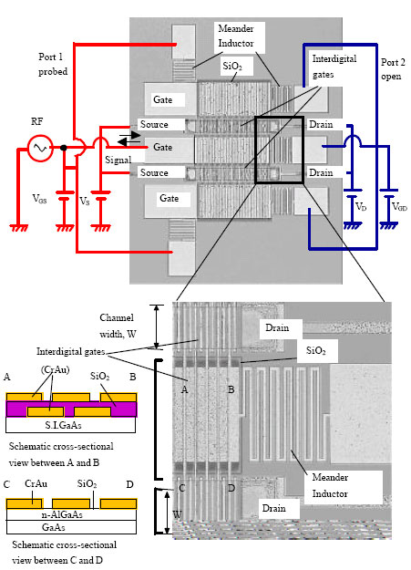Image for - Plasma Wave Electronics: A Revival Towards Solid-State Terahertz Electron Devices