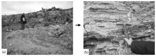 Image for - Preservation of Biogenerated Mixed Facies: A Case Study from the Neoproterozoic Villa Mónica Formation, Sierra La Juanita, Tandilia, Argentina
