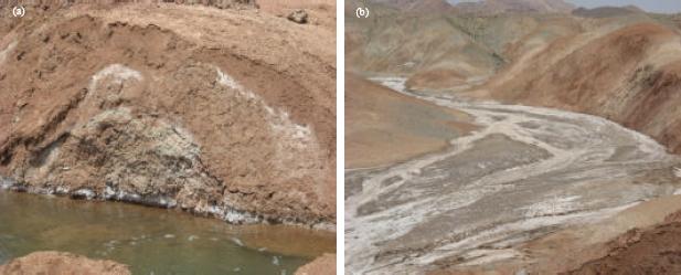 Image for - Improvement of Volume Change Characteristics of Saline Clayey Soils