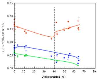 Image for - Drag Reduction of Biopolymer Flows