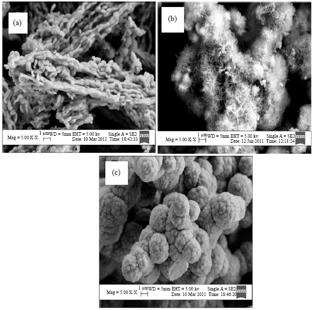 Image for - Instability of SBA-15 to Strong Base: Effects of LiOH Impregnation on its Surface Characteristics and Mesoporous Structure