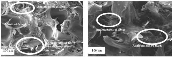 Image for - Optimizing Injection Molding Processing Parameters for Enhanced Mechanical Performance of Oil Palm Empty Fruit Bunch High Density Polyethylene Composites