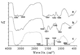 Image for - Silk Fibroin/Chitosan Blend Films Loaded Methylene Blue as a Model for Polar Molecular Releasing: Comparison between Thai Silk Varieties