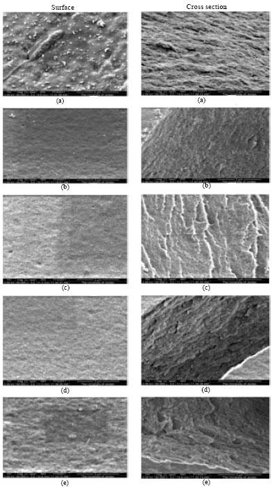 Image for - Sucrose as a Crosslinking Modifier for the Preparation of Calcium Alginate Films via External Gelation