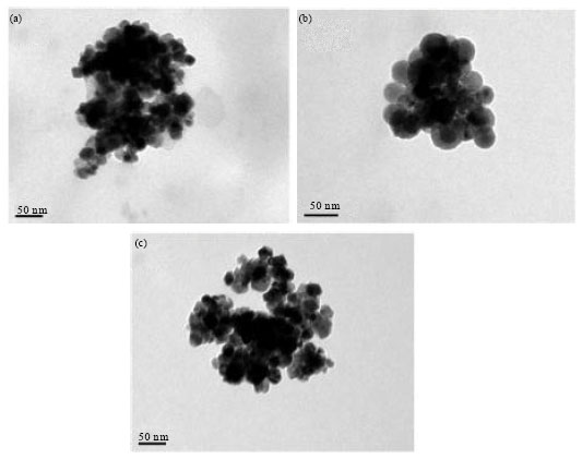 Image for - Preparation of Surfactant-free Linear and Star-shaped Poly(L-lactide)-b-methoxy Polyethylene Glycol Nanoparticles for Drug Delivery
