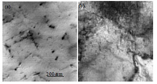 Image for - Effects of Composition on the Mechanical Properties and Microstructural Development    of Dilute 6000 Series Alloys