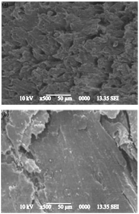 Image for - Influence of Nanoclay/Phenol Formaldehyde Resin on Wood Polymer Nanocomposites