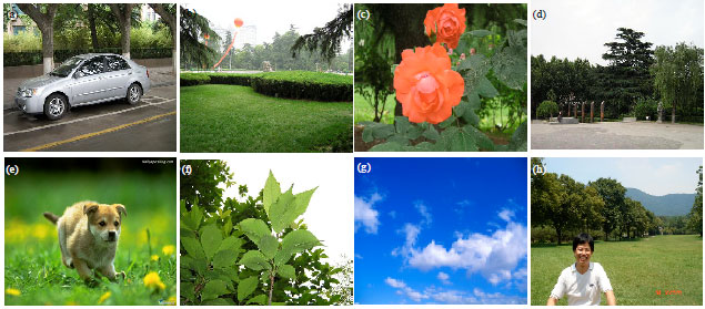 Image for - Image Searching Algorithm based on the Partition of Multiple Scales and    Levels