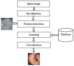 Image for - Ear Identification Based on Improved Algorithm of ICPSCM