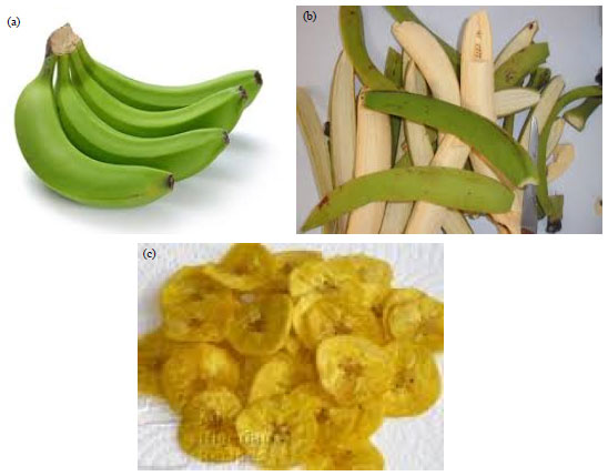 Image for - Effects of Deep-Fat Frying using Canola Oil, Soya Oil and Vegetable Oil on the Proximate, Vitamins and Mineral Contents of Unripe Plantain (Musa x paradisiaca)
