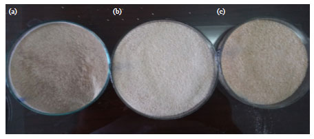 Image for - Characterization of Chitosan Extracted from Different Crustacean Shell Wastes