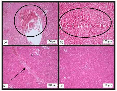Image for - Adverse Effects of Tannin Contained in Mimosa pudica Root Extract