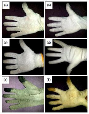 Image for - Frictional Behavior of Different Glove Materials Sliding Against Glass Sheet