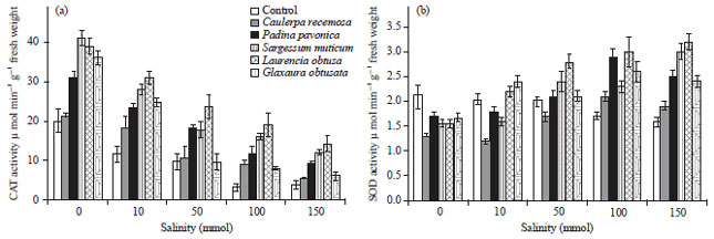Image for - Potential Impact of Marine Algal Extracts on the Growth and Metabolic Activities of Salinity Stressed Wheat Seedlings