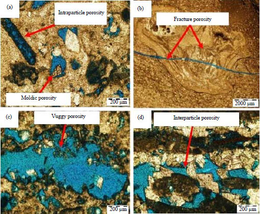 Image for - Sedimentology and Reservoir Geometry of the Miocene Carbonate Deposits in Central Luconia, Offshore, Sarawak, Malaysia