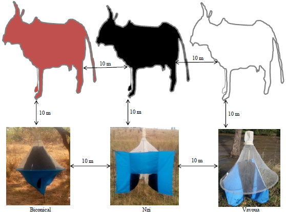 Image for - Relative Efficacy of Tsetse Traps and Live Cattle in Estimating the Real Abundance of Blood-Sucking Insects