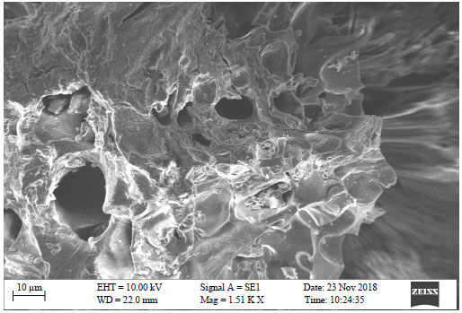 Image for - Isotherm and Kinetic Studies of Methylene Blue Adsorption Using Activated Carbon Prepared from Teak Wood Waste Biomass