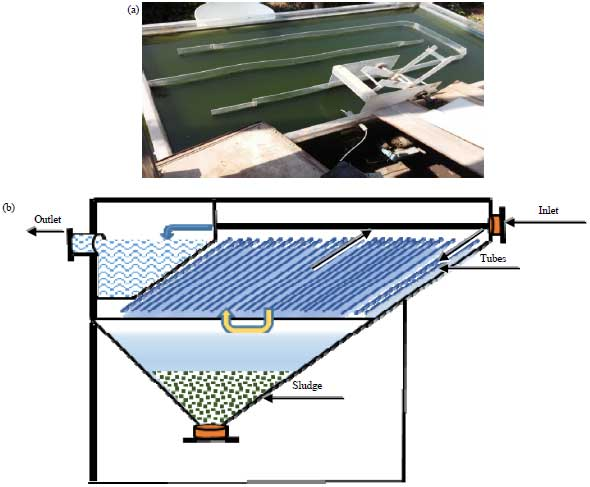Image for - Enhancing Biomass, Energy and Value Added Compounds Yield from Pilot Scale Pond System