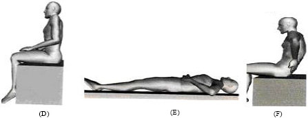 Image for - Study of Alleviating and Exacerbating Movement in Nurses with non Specific Chronic Low Back Pain: The Sahrmann's Approach