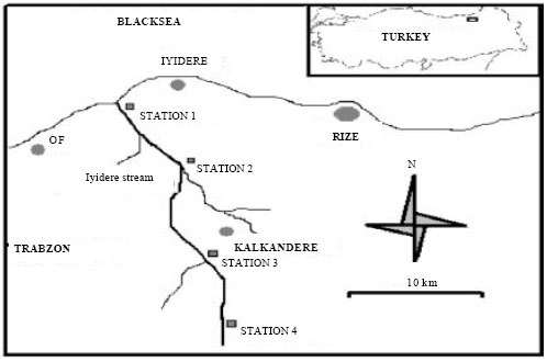 Image for - The Trace Element Analysis in Freshwater Fish Species, Water and Sediment in Iyidere Stream (Rize-Turkey)