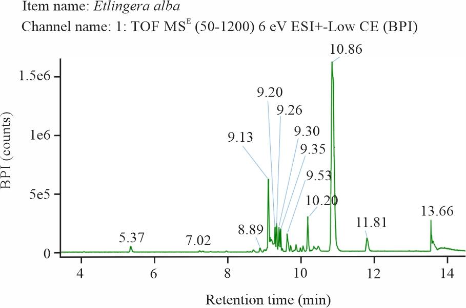 Image for - Phytochemical Screening, Toxicity Activity and Antioxidant Capacity of Ethanolic Extract of Etlingera alba Rhizome