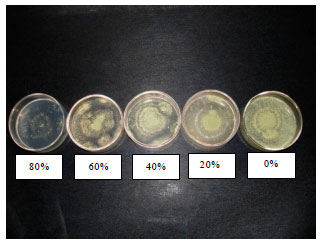 Image for - Modified Atmosphere Technology in Seed Health Management: Laboratory and Field Assay of Carbon Dioxide Against Storage Fungi in Paddy