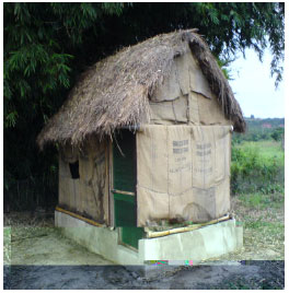 Image for - Design, Construction and Testing of an Evaporative Cooling Barn for Storing Sweet Potatoes in the Tropics