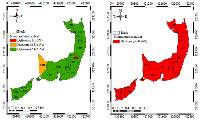Image for - Mapping Nutrient Status in Oil Palm Plantation Using Geographic Information System