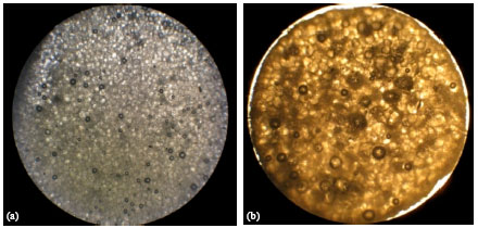 Image for - Development and Evaluation of Ionotropically Emulsion Gelled Sodium Alginate Beads and its Morphological Characterization by Optical Micrographs